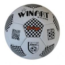 Winart College focilabda